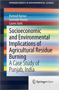 Socioeconomic and Environmental Implications of Agricultural Residue Burning: A Case Study of Punjab, India