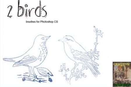 2 Birds Brushes
