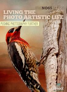 Living The Photo Artistic Life - July 2020
