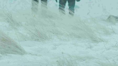 BBC - Yellowstone: Wildest Winter to Blazing Summer (2016)