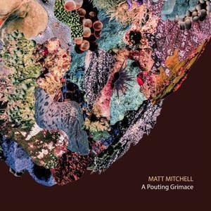 Matt Mitchell - A Pouting Grimace (2017) {Pi Recordings}