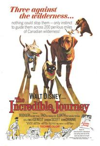 The Incredible Journey (1963) [Repost]
