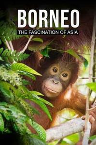 Borneo The Fascination of Asia (2017)