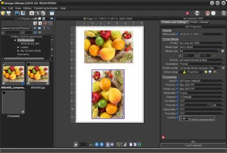 Qimage Ultimate 2019.124