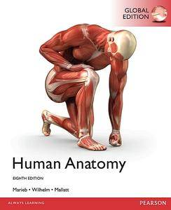 Human Anatomy (8th Edition)  (Repost)