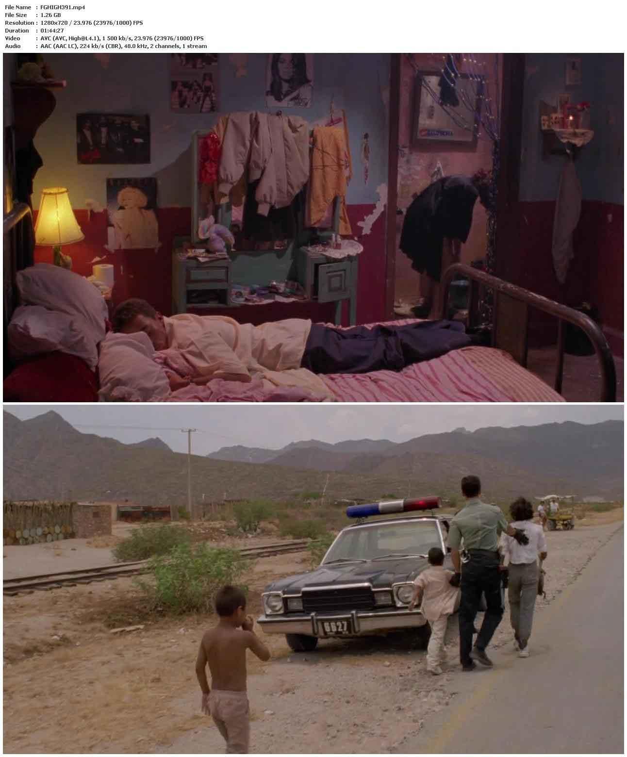 Highway Patrolman (1991)