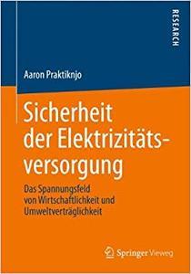 Sicherheit der Elektrizitätsversorgung: Das Spannungsfeld von Wirtschaftlichkeit und Umweltverträglichkeit (Repost)