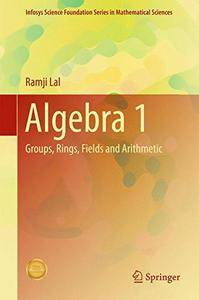 Algebra 1: Groups, Rings, Fields and Arithmetic (Infosys Science Foundation Series) [Repost]