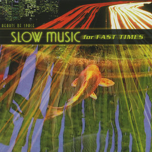 Various Artists - Slow Music for Fast Times (2001)