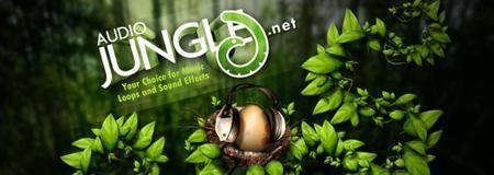 AudioJungle Mega Bundle 1350+ Sound Clips