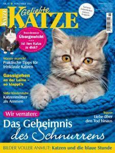 Geliebte Katze - November 2017