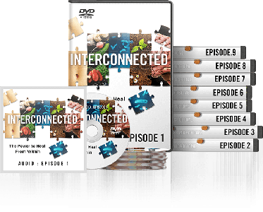 Interconnected: The Power to Heal From Within