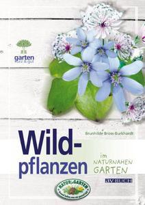 Wildpflanzen im naturnahen Garten (Repost)
