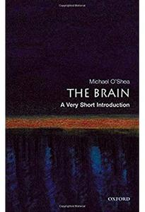 The Brain: A Very Short Introduction [Repost]