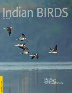 Indian Birds - April 20, 2017
