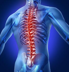 Orthopedics Books Collection