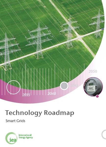 Technology Roadmap: Smart Grids