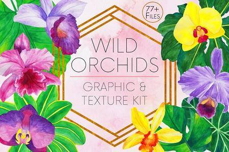 CreativeMarket - Wild Orchids Graphic and Texture Kit