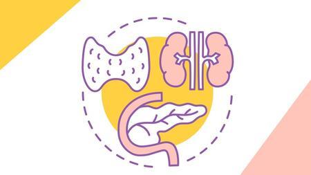 Endocrine System Made Easy