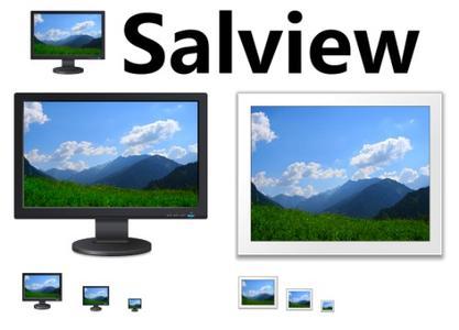 Salview 2.2 Portable