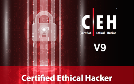 Certified Ethical Hacking Certification CEH v.9 full tools + Courseware
