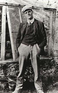 [E-book] James Joyce - Ulises