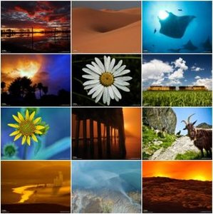 National Geographic - Wallpaper 2009 - PC