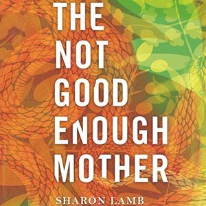 The Not Good Enough Mother [Audiobook]