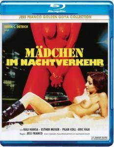 Mädchen im Nachtverkehr (1976) Girls in the Night Traffic