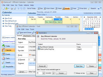 Efficient Calendar 5.60 Build 551 Multilingual Portable