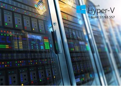 Microsoft Hyper-V Server 2019 build 17763.557