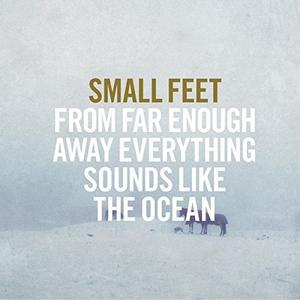 Small Feet - From Far Enough Away Everything Sounds Like The Ocean (2015)