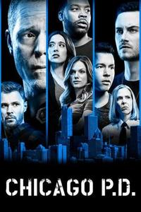 Chicago P.D. S06E22