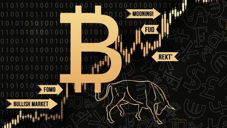 Bitcoin Trading & Bitcoin Mining Crypto Slang Course