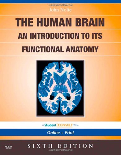 The Human Brain: An Introduction to its Functional Anatomy [Repost]