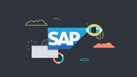 SAP Project Essential Training