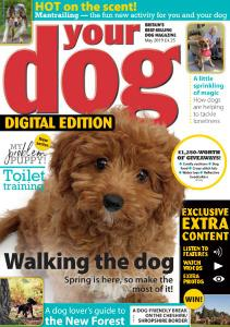 Your Dog - May 2019