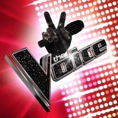 The Voice (2016)