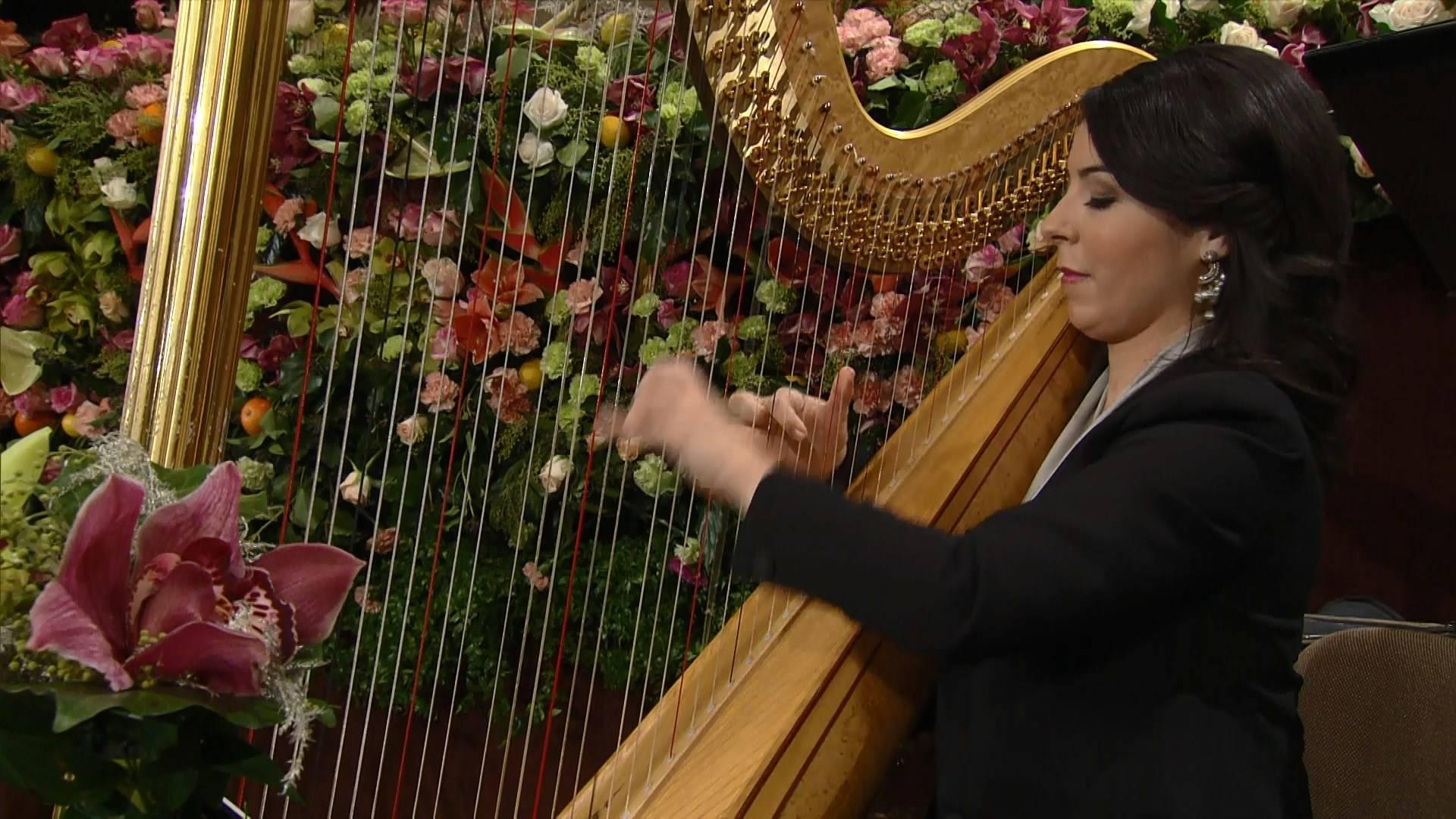 Vienna Philharmonic - New Year's Concert 2017 [HDTV 1080i]