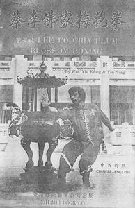 Tsai Lee Fo Chia Plum Blossom Boxing (Repost)