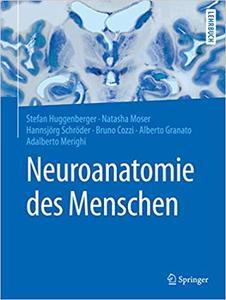 Neuroanatomie des Menschen