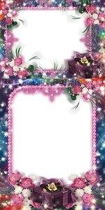 Flowers frames #8