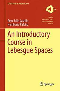 An Introductory Course in Lebesgue Spaces