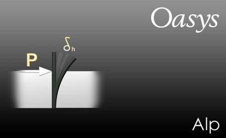 Oasys Alp 19.2.0.15