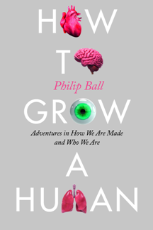 How to Grow a Human : Adventures in How We Are Made and Who We Are