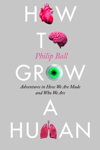 How to Grow a Human Adventures in How We Are Made and Who We Are
