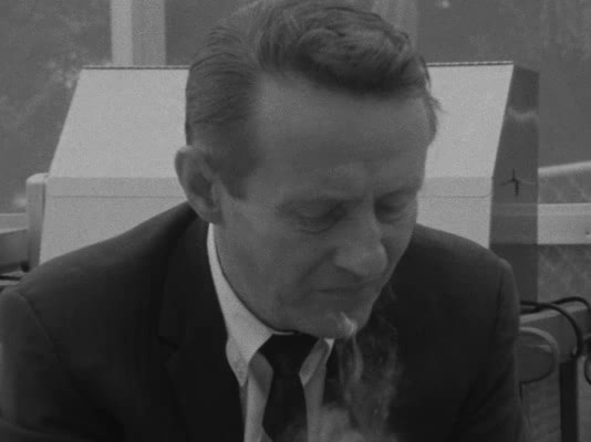 Salesman (1969) [The Criterion Collection]
