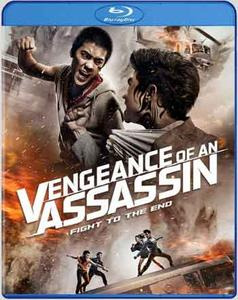 Vengeance of an Assassin (2014)