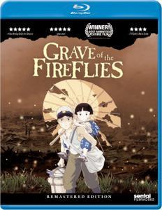 Grave of the Fireflies / Hotaru no haka (1988)