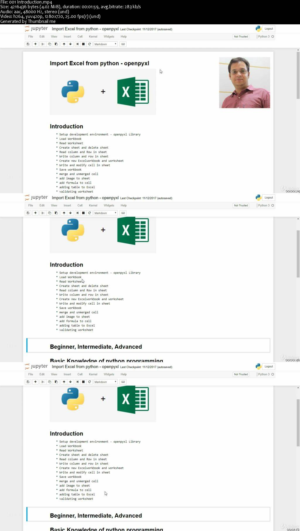 Python automation Excel, Word, PDF, Web Scraping and more